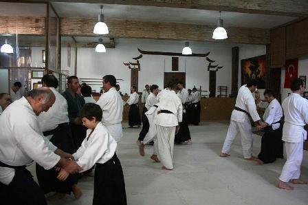 aikido2011